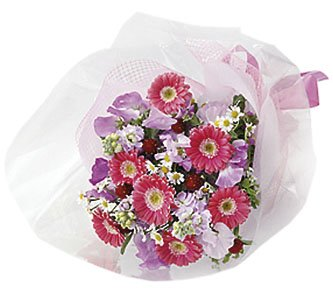 Seasonal Bouquet (red & pink)