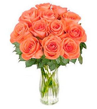 """Orange Roses """"Bliss"""""""