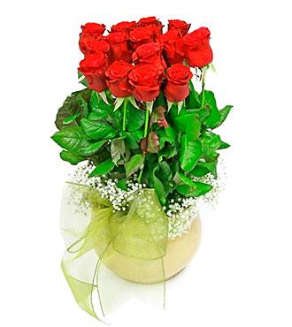 Magic Love Flowers