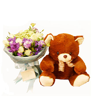 Lovely Brown Bear