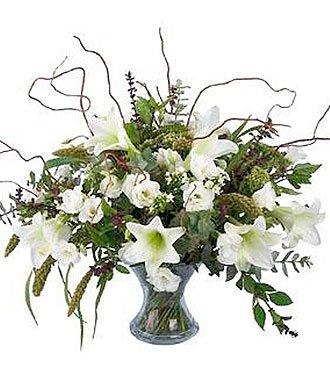 White Festive Beauty
