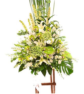 Argmt Cut Flower w/Stand