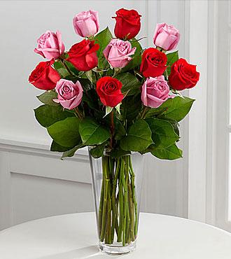 True Romance Rose