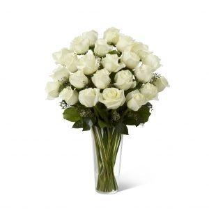 Rosas Blancas P