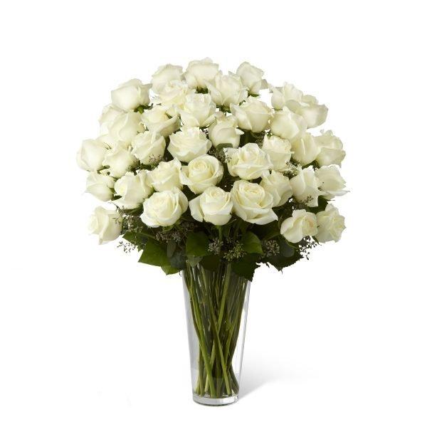 Rosas Blancas E